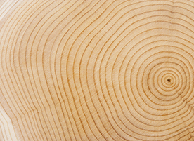 Borates for Wood Protection: Forest-to-Market
