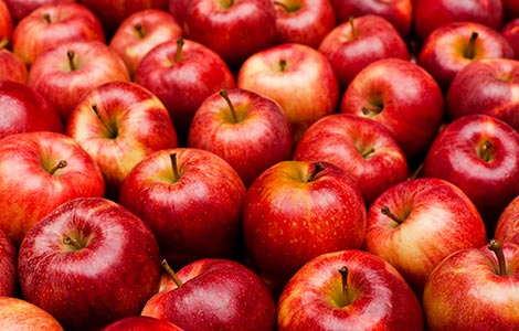 Apples: Boron applications for increased production